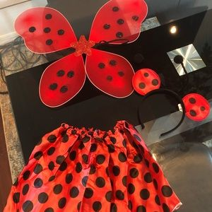 Other - Lady bug Halloween costume new